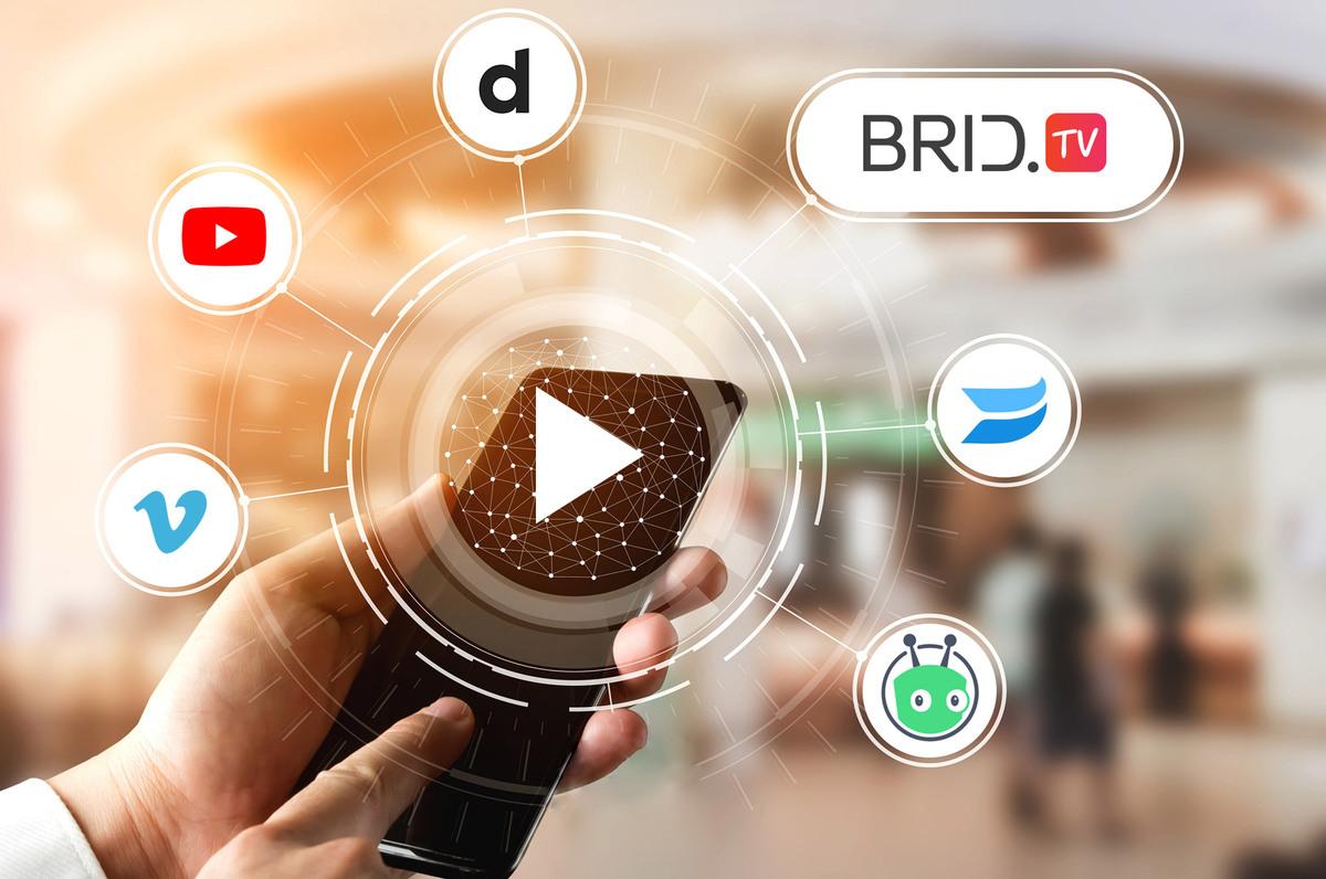 free video hosting bridtv
