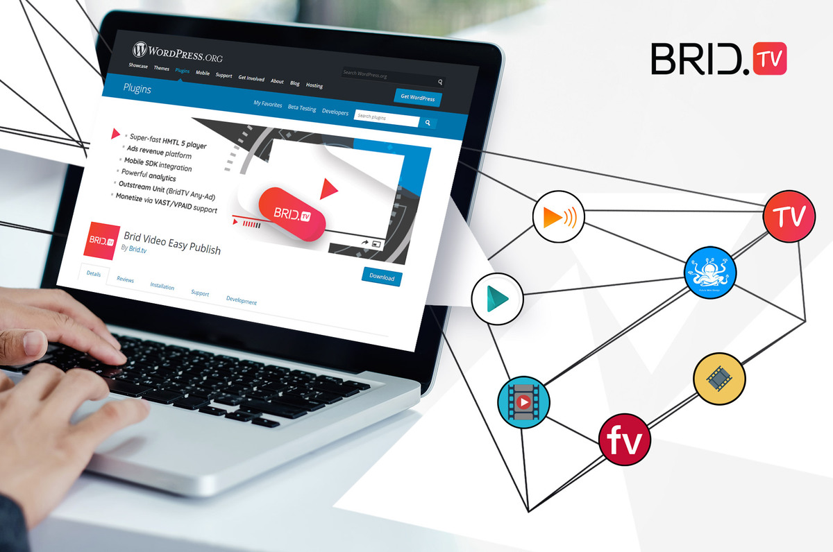 self-hosted video player for wordpress Brid.TV