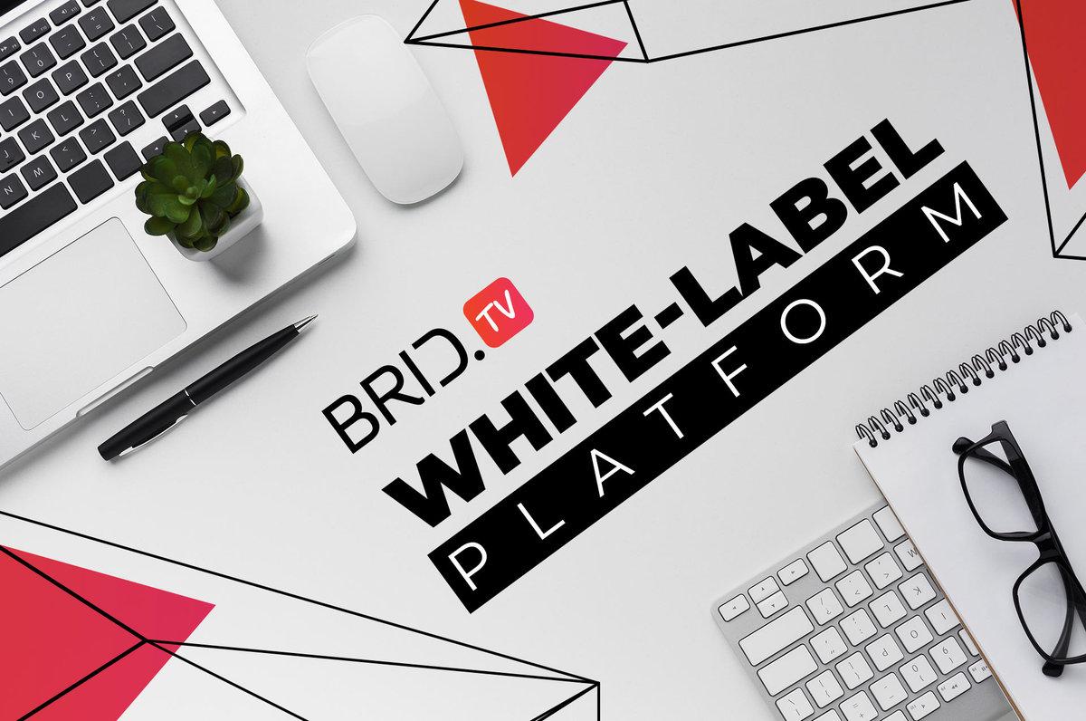 white-label video platform BridTV