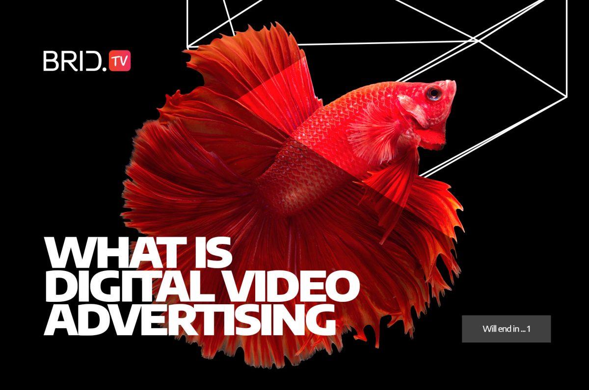 what is digital video advertising